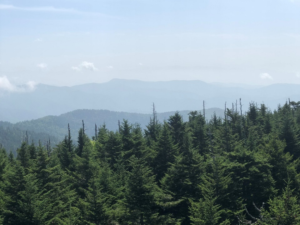 Would have to have coffee while hiking through the great smoky mountains, especially while enjoying a view from Clingmans Dome!