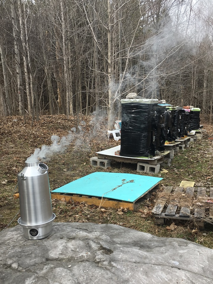 Kelly Kettle is a beekeeper's best friend!   Picture taken Beeyard, Fish Creek Conservation, Granton, Ontario Canada